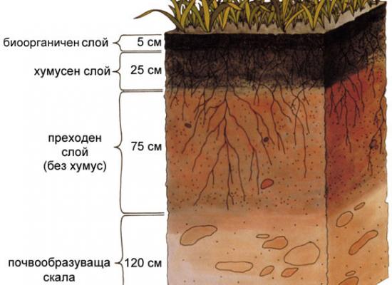 soil, drilling for water, сонди, сондажи
