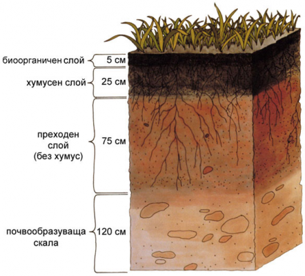 soil, drilling for water, сонди, сондажи